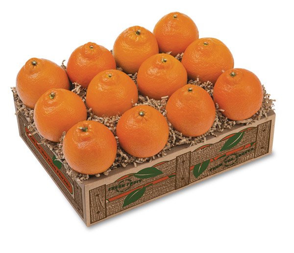 honeybell oranges