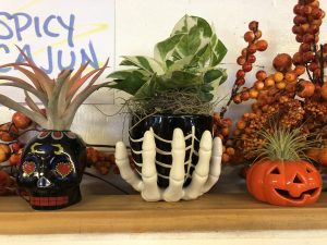 fall halloween planters