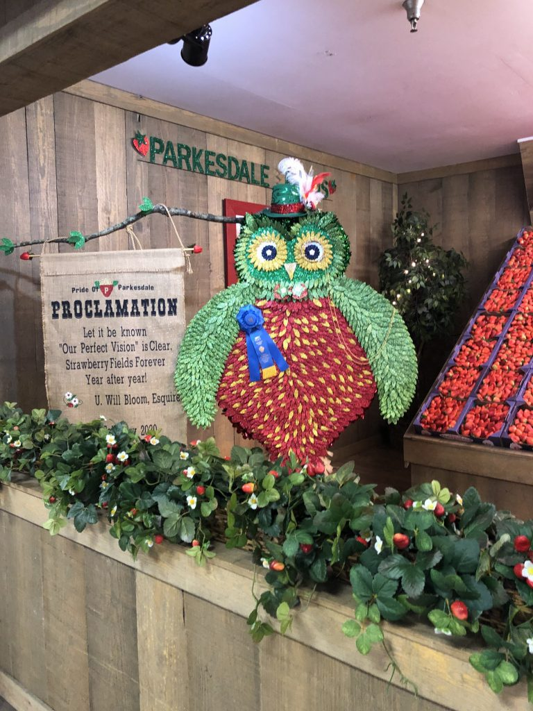 Parkesdale booth with owl looking like a strawberry